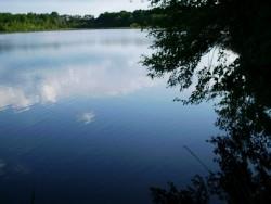 Un étang en Sologne